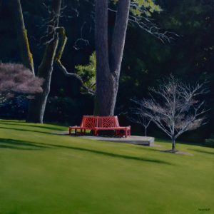 The Red Seat by Christopher McVinish